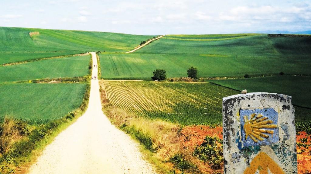 Compostela 4